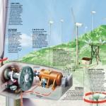¿Cómo funciona un parque eólico?