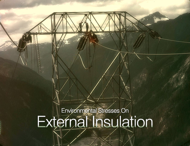 environmental-stresses-external-insulation