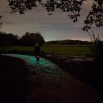 Un camino de bicicletas iluminado con energía solar, Inspirado por Van Gogh