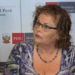 Perú subastará licencias para ocho proyectos de transmisión eléctrica por US$ 690 millones
