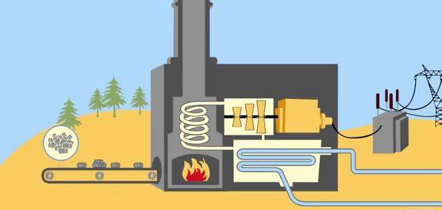 central termica de biomasa