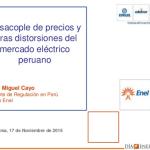 Desacople de precios y otras distorsiones del mercado eléctrico peruano