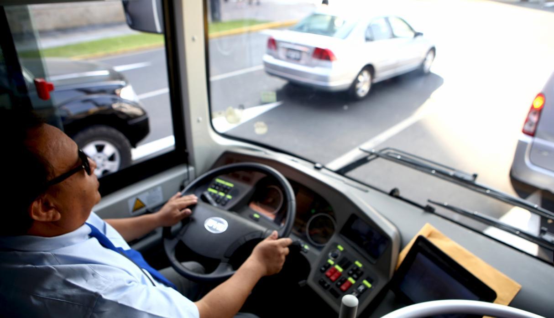 bus electrico8