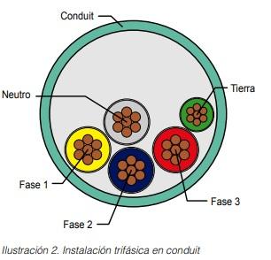 ilustración2