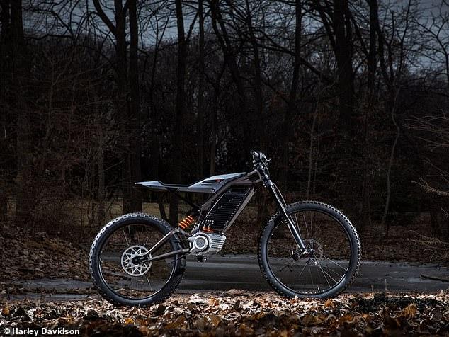 moto-electrica3