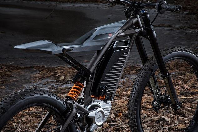 moto-electrica4