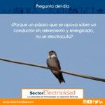 ¿Porqué un pájaro que se apoya sobre un conductor sin aislamiento y energizado, no se electrocuta?
